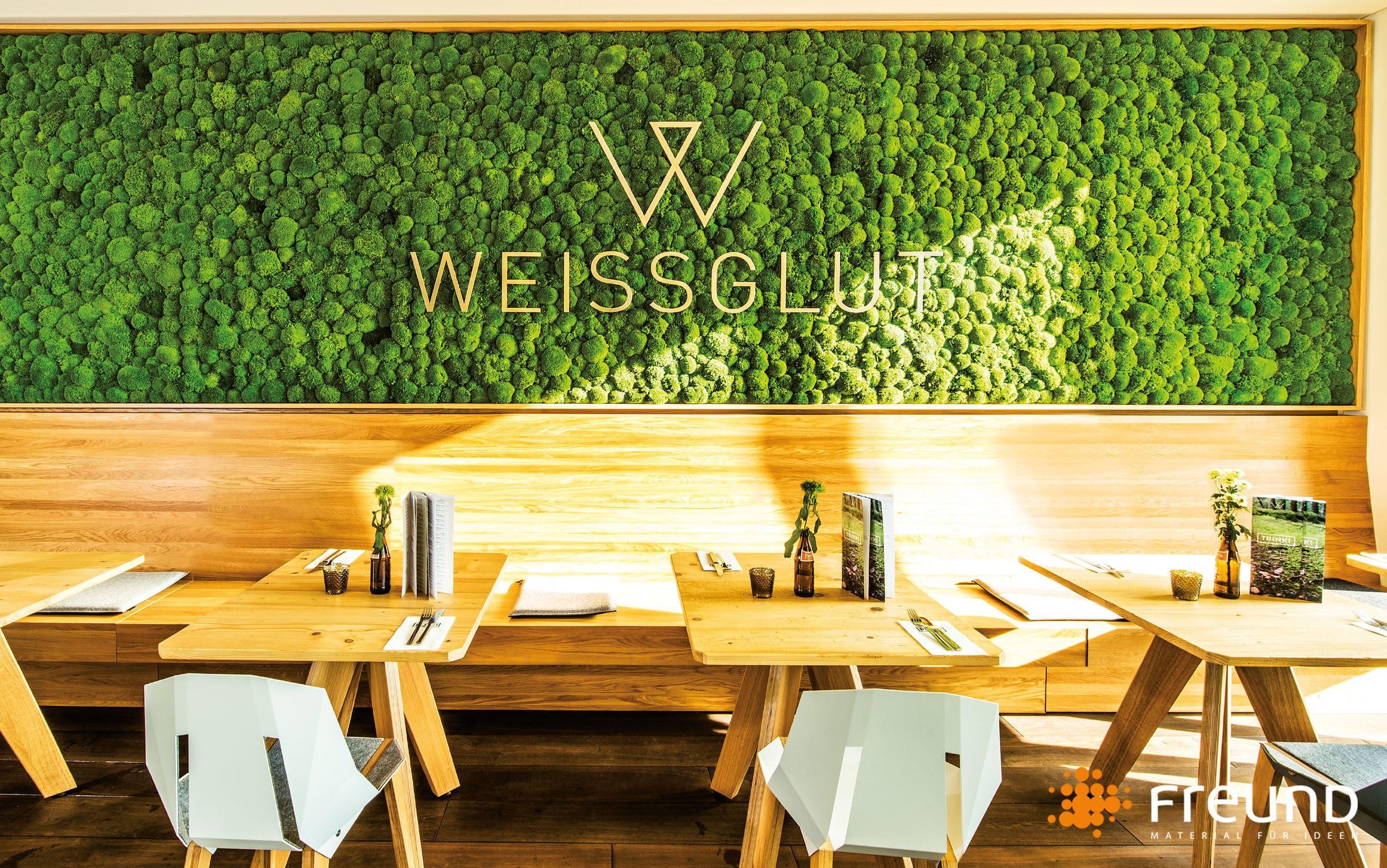 Parete Verde Ufficio : Parete vegetale stabilizzata in pannelli modulari da interno