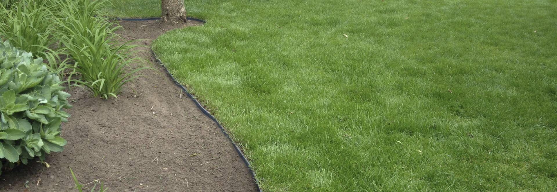 Bordure Da Giardino In Plastica.Bordura Da Giardino Per Tetto Verde In Plastica Lineare Greenmax