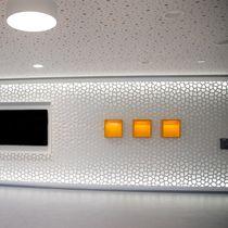 Rivestimento murale professionale / testurizzato / perforato / per interni