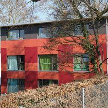 Rivestimento di facciata per facciata ventilata / in fibra di legno / liscio / colorato