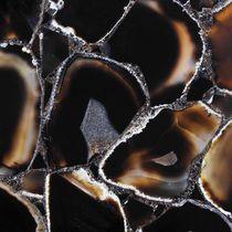 Piastrella da interno / da parete / per pavimento / in pietra semipreziosa