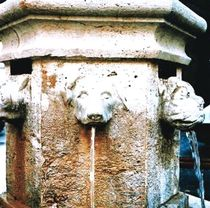 Fontana pubblica / in pietra / classica