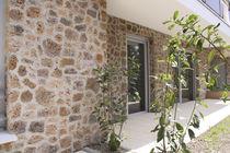 Lastra di paramento in pietra / indoor / per esterni / aspetto pietra