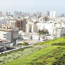 Sistema per giardino pensile estensivo / per tetto piano