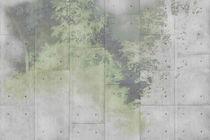Carte da parati moderne / in vinile / con motivi naturali / aspetto cemento