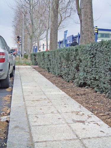 pavimentazione in calcestruzzo / drenante / per spazio pubblico / da esterno