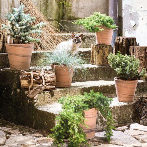 vaso da giardino in terracotta / conico / tondo