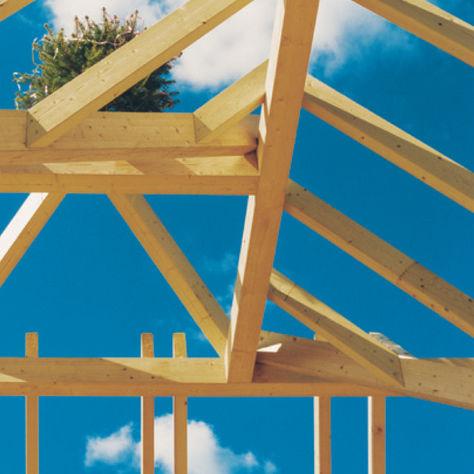 ossatura per tetto in legno