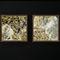 Pannello di rivestimento / decorativo / da parete / per arredamento di interni TRANSLUCENT ARDOISE - MOSCOU StoneLeaf