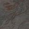 Rivestimento murale in pietra naturale / per uso residenziale / professionale / liscio ARDOISE - BUDAPEST StoneLeaf