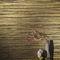 rivestimento murale per uso residenziale / non tessuto / a rilievo / lucido
