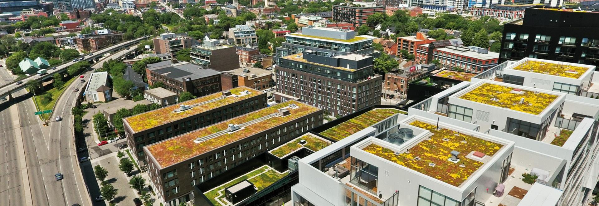 A BAU 2019, ZinCo dimostrerà come costruire i tetti verdi innovatori. Il nostro esempio mostra i condomini della città del fiume, Toronto, Canada.