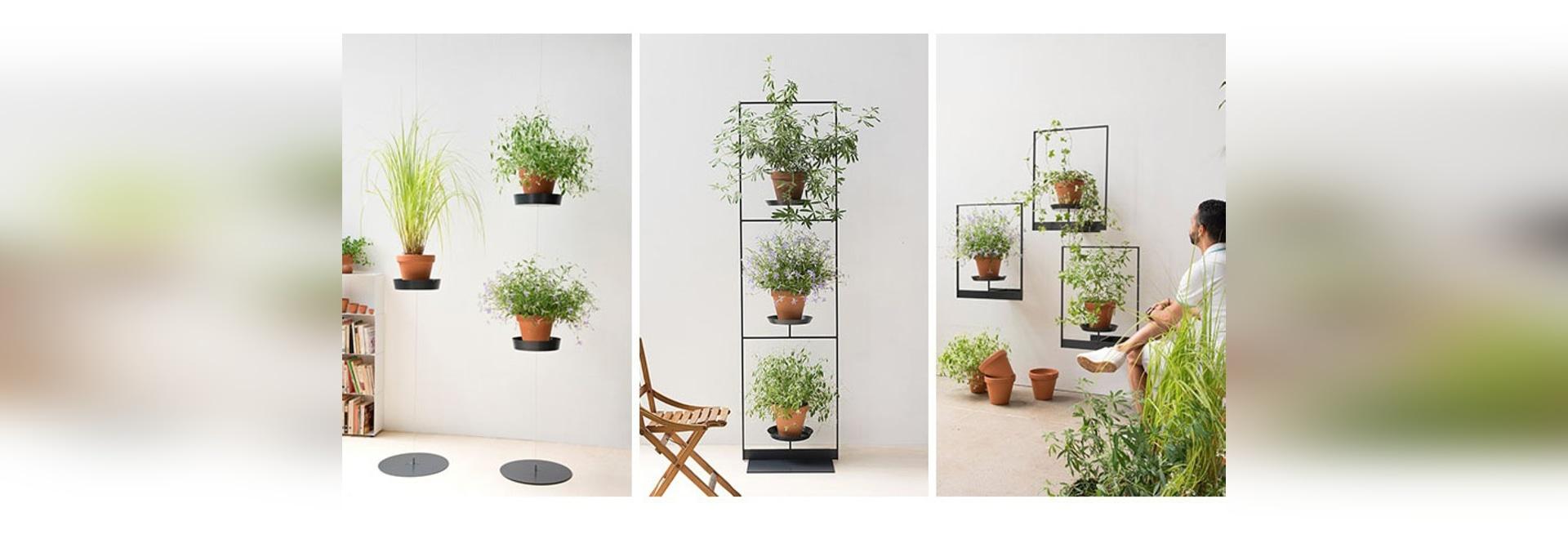 La raccolta del supporto della pianta di Teepots da Mauro Canfori