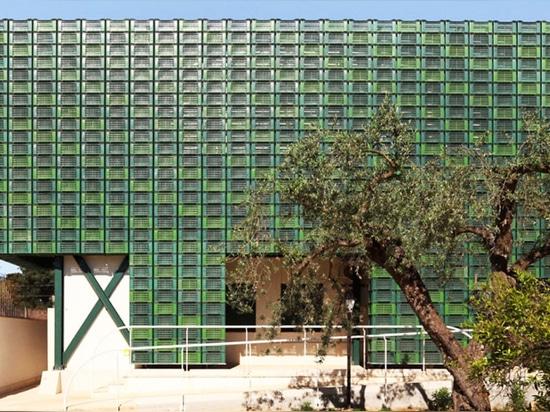 Le centinaia di casse arancio repurposed compongono la facciata colpente in Italia