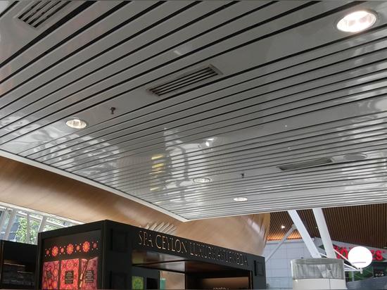 Il soffitto del Innova della mascotte ha messo Downlights (tecnologia del riflettore di Darklight)