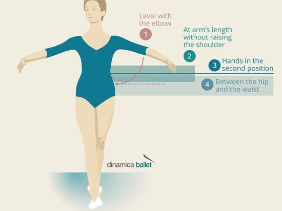 Quanto su dovrebbe una sbarra di balletto essere per un individuo?