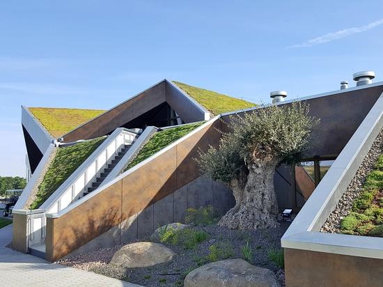 Creare un tetto verde su un tetto lanciato non è un problema ha fornito i dispositivi speciali del tetto è preso in considerazione.