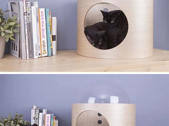 L'astronave ora ha ispirato la cosa di Cat Beds Are A