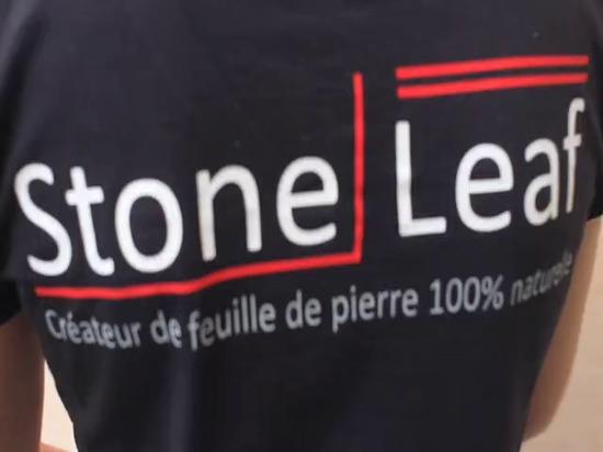 Classico di StoneLeaf