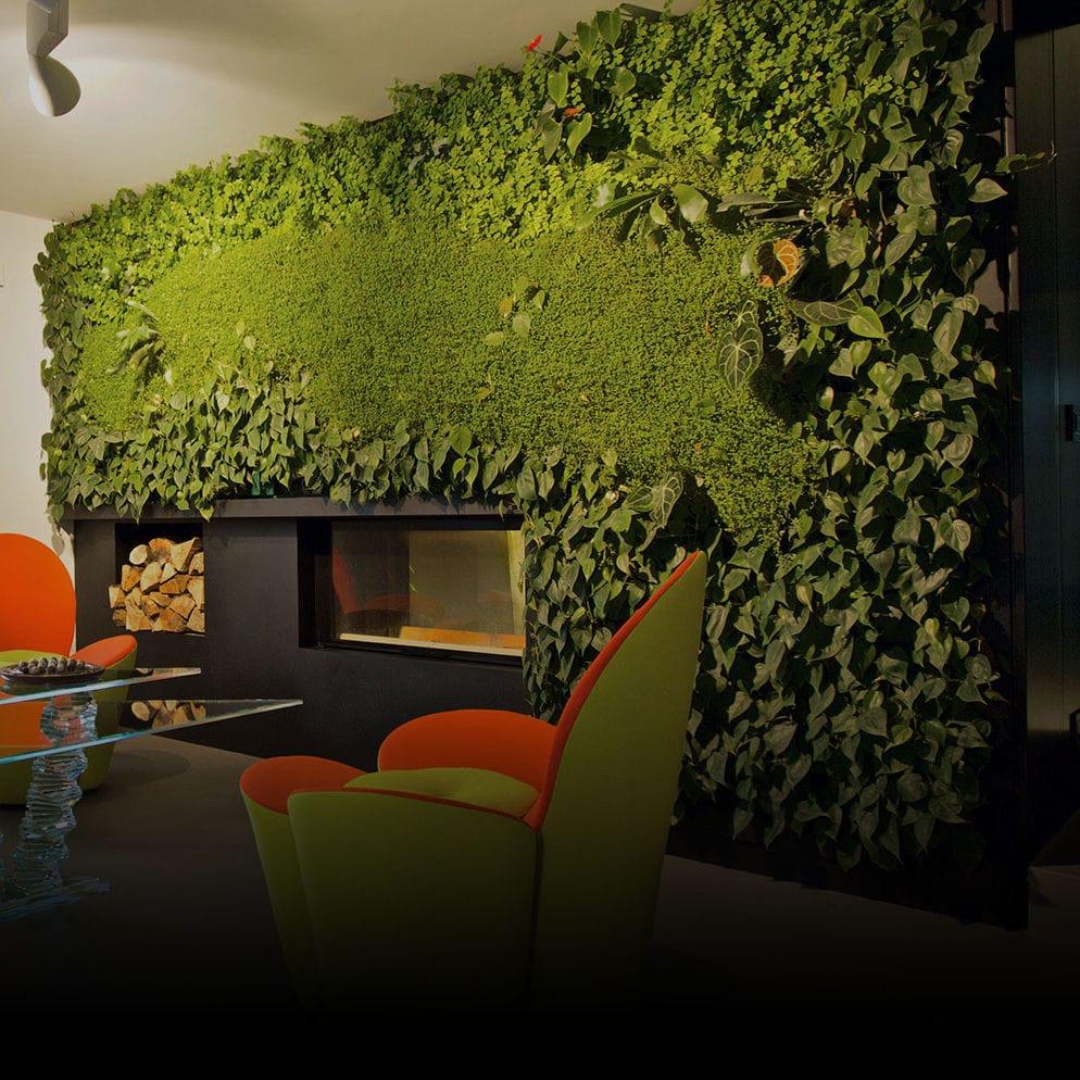 Pareti Verdi Verticali Costi parete vegetale di piante viventi - sundar italia - naturale