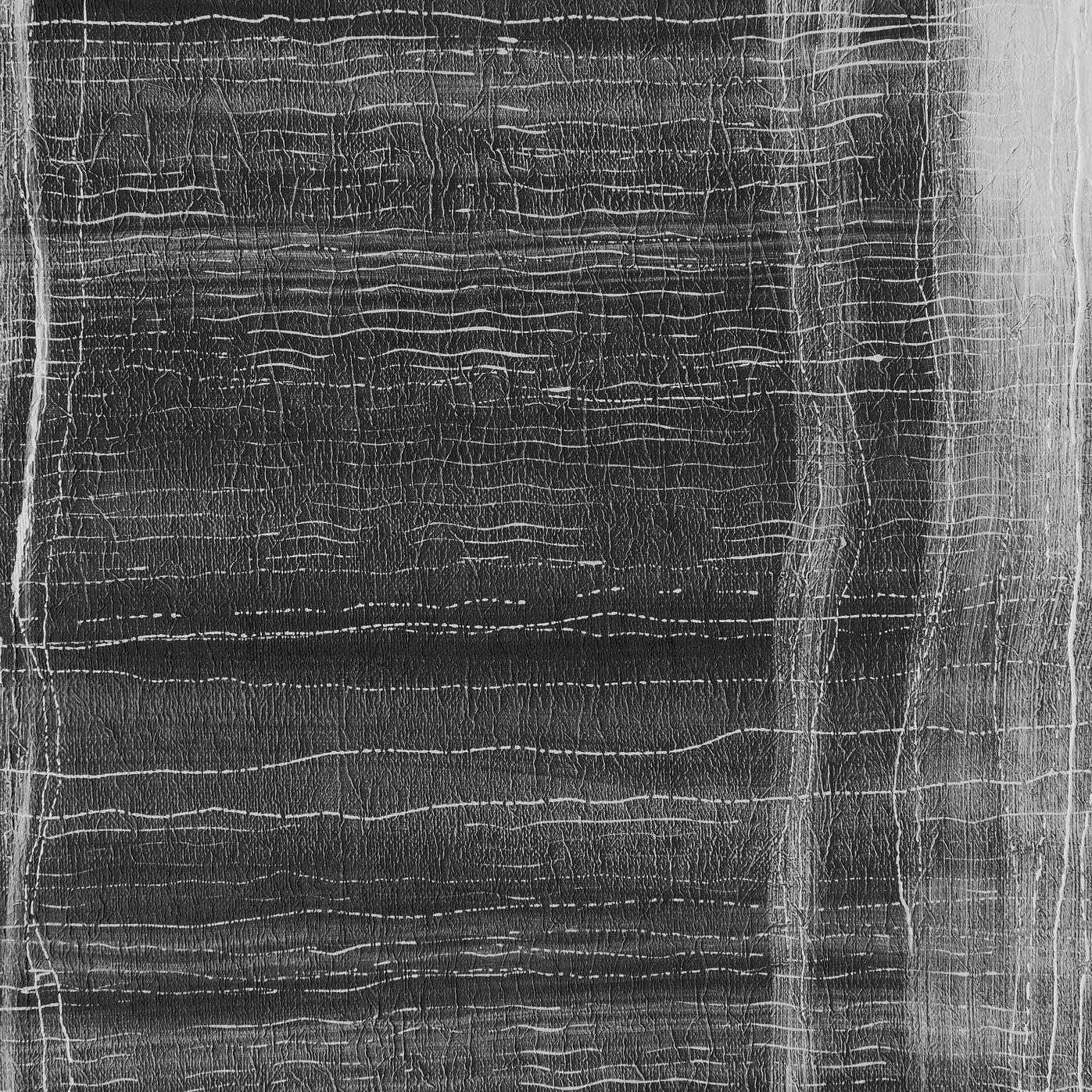 Carta Da Parati Nera carta da parati moderna / a motivi / aspetto tessuto / nera