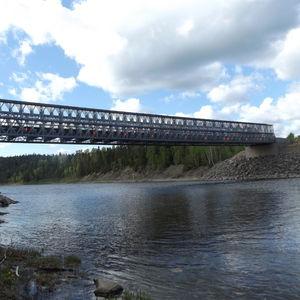 ponte reticolare