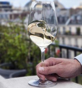 bicchiere a calice / da vino / in vetro / contract