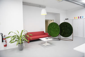 quadro vegetale stabilizzato / in muschio / in fogliame / in lichene