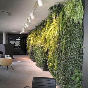 parete vegetale stabilizzata / di piante viventi / in pannelli modulari / su misura