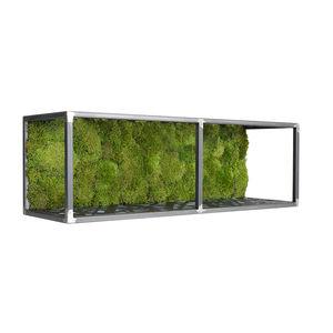 quadro vegetale stabilizzato / in muschio / da interno / con telaio in metallo