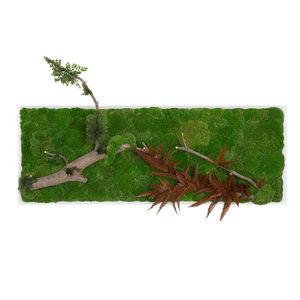 quadro vegetale stabilizzato