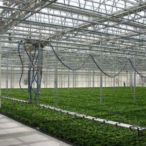 sistema di irrigazione automatizzato