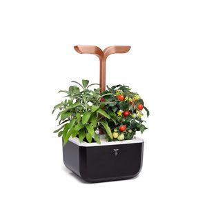 fioriera per orto in plastica / per uso residenziale / da interno