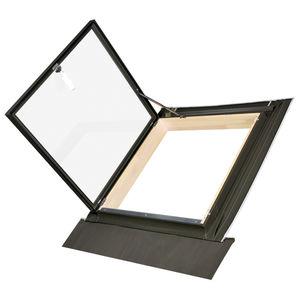 finestra da tetto a proiezione