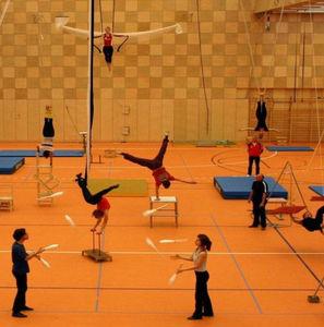 pavimentazione sportiva in linoleum / da interno / per sale polivalenti