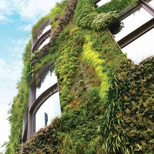 graticolato per giardino verticale