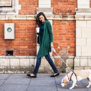 distributore di sacchetti per escrementi di cani per spazio pubblico