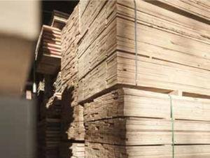 pannello in legno di costruzione / per soffitto / per muro / per tetto
