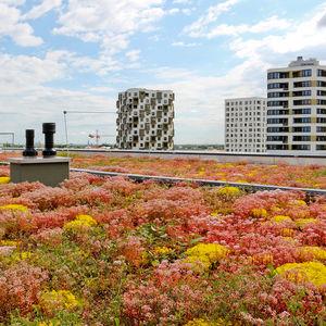 sistema per giardino pensile per tetti piani