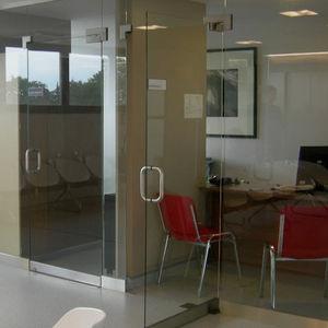 pannello in vetro temprato / per parete / per porta / per facciata