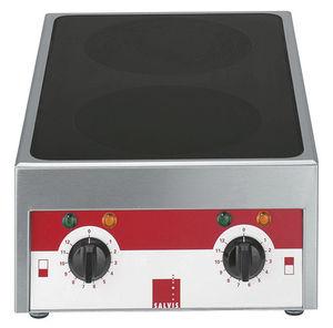 piano cottura elettrico / professionale / 2 fuochi