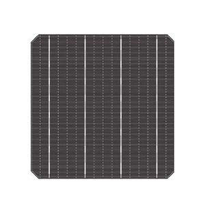 cellula fotovoltaica tinta / monocristallina