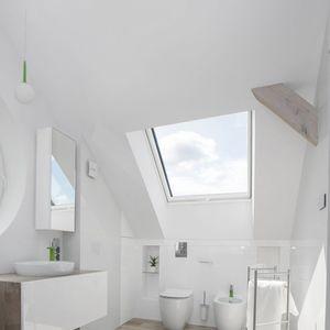 finestra da tetto basculante