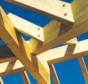 ossatura in legno massiccia / per tettoia di posto auto / contract