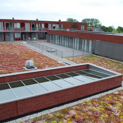 tetto verde estensivo - Optigrün International AG
