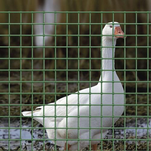 recinzione per recinto di animali