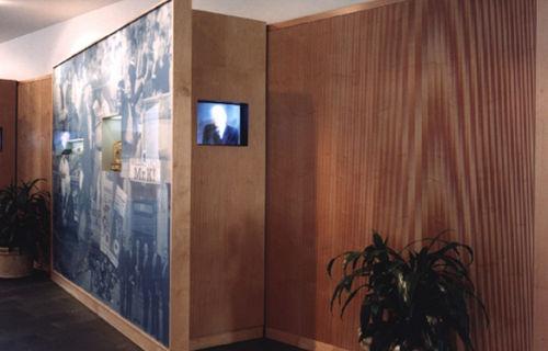pannello in fibra di vetro / da parete / liscio / ad alta densità