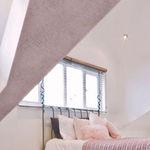 intonaco decorativo / da interno / per muro / alla calce
