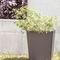 vaso da giardino in ferro / trapezoidale / per spazio pubblico