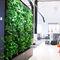 parete vegetale da interno